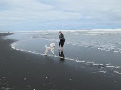 Black sand beach, New Zealand